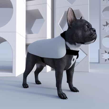 Hundemantel (Klein) Brightwater bedruckbar zum selbst gestalten
