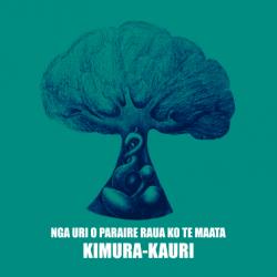 KIMURA KAURI